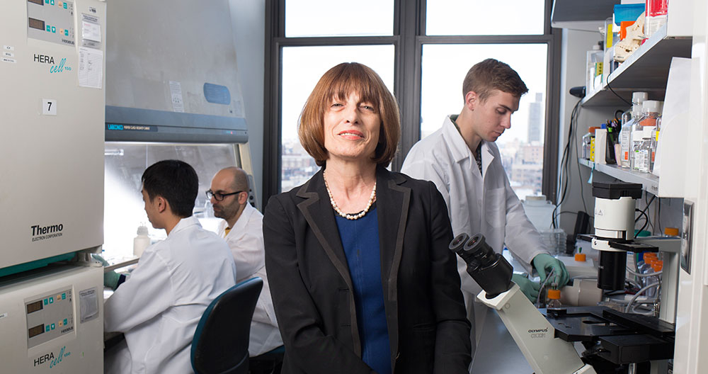 Gordana Vunjak-Novakovic has been appointed University Professor, Columbia University's highest academic honor.